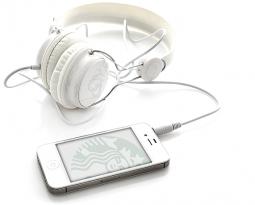 Bilingual Audio Training Project